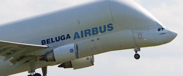 Beluga Airbus beim Start