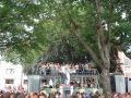 Vision Parade 2003 in Bremen